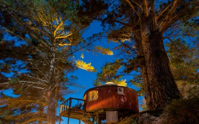 All About Glamping