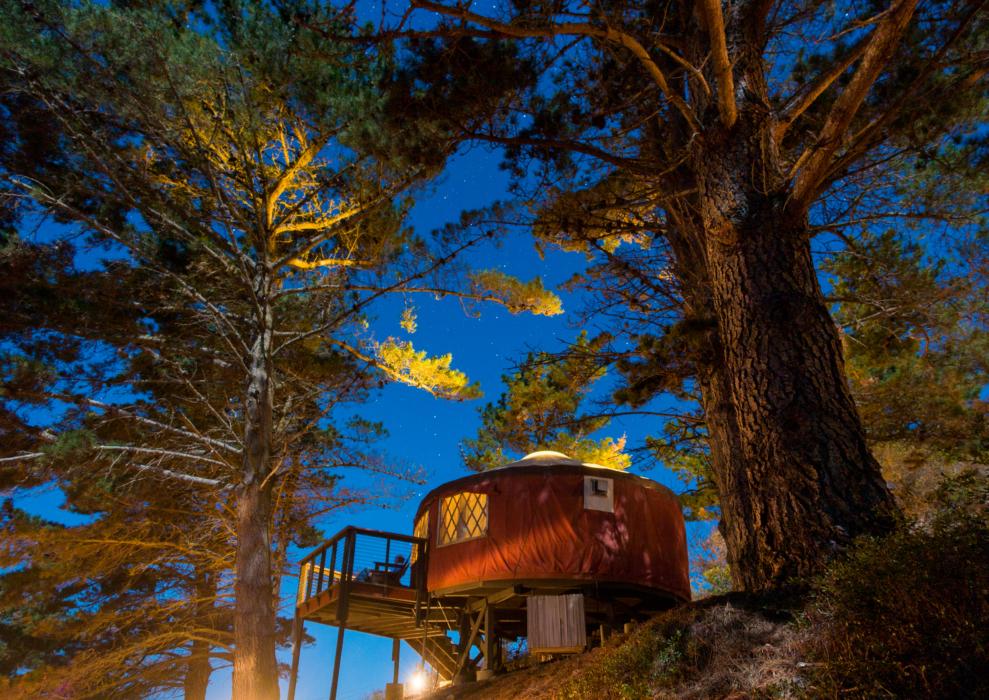 Yurt/tent under starlit sky in the woods
