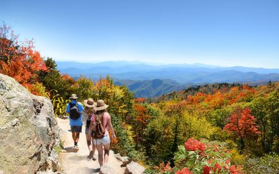 The Best Hikes in Asheville for Every Fitness Level